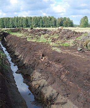 acid-sulphate-soils-2